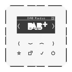 DABCDWW Встраиваемое радио Jung программа CD стекло Белое