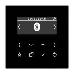 DABLSBTSW Встраиваемое радио с Bluetooth Jung программа LS стекло Черное