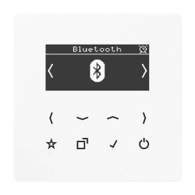 DABLSBTWW Встраиваемое радио с Bluetooth Jung программа LS стекло Белое