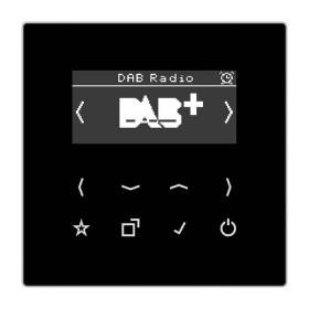 DABLSSW Встраиваемое радио Jung программа LS стекло Черное