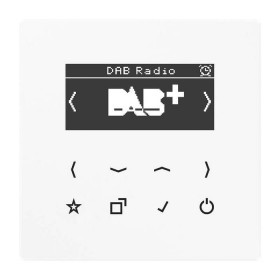 DABLSWW Встраиваемое радио Jung программа LS стекло Белое
