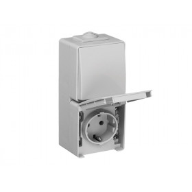 Блок розетка и выключатель Efapel 48 Серый 48866 CCZ IP65