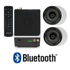 """Комплект радио FM+Bluetooth+2 круглые колонки 5,25""""+пульт ART3.1BT+FL501, арт.PACKART31/FL501"""