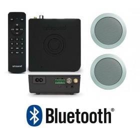"Комплект радио FM+Bluetooth+2 круглые колонки 4""+пульт ART3.1BT+MD50 W, арт.PACKART31/MD50"